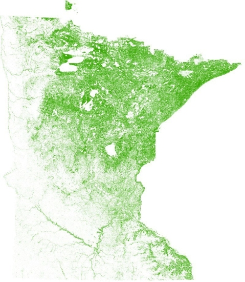 Tree Map for Minnesota | In the Scan
