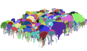 Example of Tree Segmentation using novel lidar approach