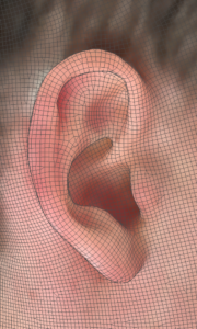 image of ear with Standard Cyborg 3D Capture
