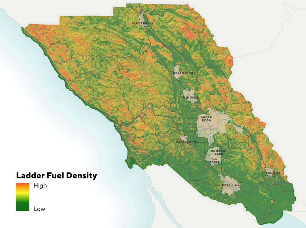 map Preventing Forest Fires with Lidar
