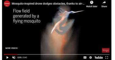 vidoe of Simulating Mosquitoes Crash Avoidance