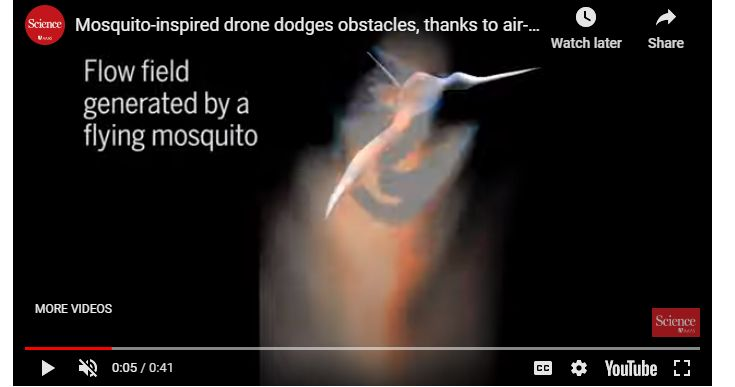 vidoe of Simulating Mosquitoes Crash Avoidance
