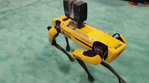 Photo of Mobile Lidar Robots